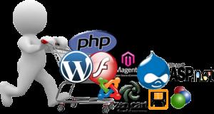 E commerce Website Development in Surat