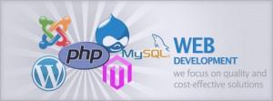 web-development11