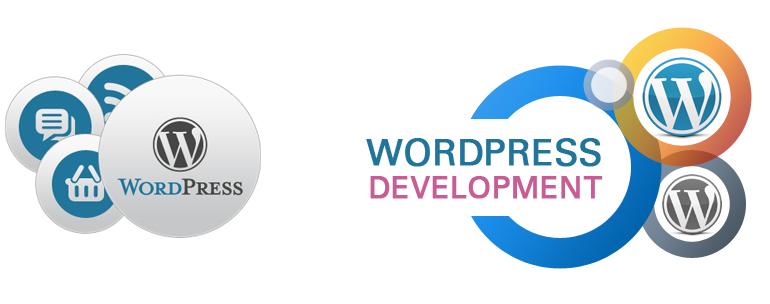 Website Development & Maintenance in WordPress