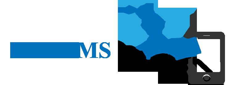 Bulk SMS in Surat/ Bulk SMS in Gujarat, Bulk SMS in India